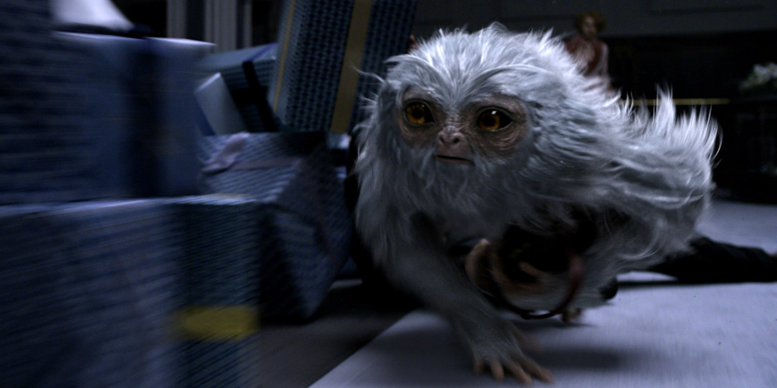 fantastic-beasts-movie-trailers-demiguise