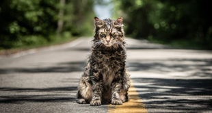 Recenzia: Pet Sematary